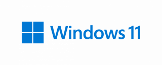 MS WINDOWS 11 PRO 64bit OEM FQC-10528